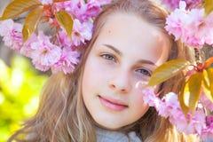printemps photographie stock libre de droits