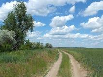 printemps Route dans les domaines verts Photographie stock