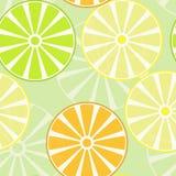 PrintFruits, куски апельсинов, лимонов и известок картина безшовная Стоковые Изображения