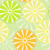 PrintFruits, slices of oranges, lemons and limes. Seamless pattern. Stock Images