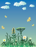 Printgrass field with flowers. Grass field with flowers, illustration Stock Image