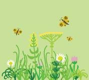 Printgrass field with flowers Stock Photo