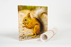 Prints on canvas Stock Image
