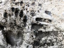 Prints of hands on concrete. Handprint close up shot royalty free stock photos