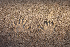 Prints in sand. Stock Photography