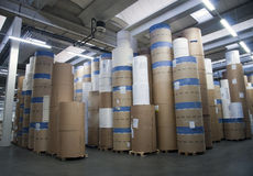 Printshop: paper warehouse Royalty Free Stock Images