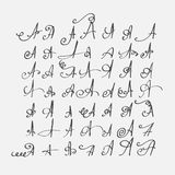 PrintVector set of calligraphic letters A hand drawn with nib, decorated with flourishes and decorative elements. Isolated on grey Royalty Free Stock Photography