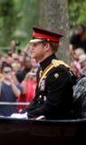 Prinz Harry stockbilder