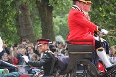 Prinz Harry London Großbritannien am 8. Juni 2019 - Meghan Markle Prince Harry George William Charles Kate Middleton lizenzfreies stockfoto