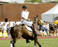 Prinz Harry Playing Polo Lizenzfreies Stockfoto