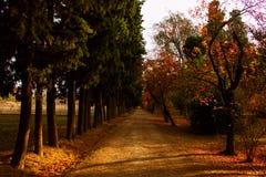 Prinz Park in Aranjuez Stockfotos