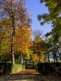 Prinz Park in Aranjuez Stockfotografie
