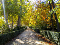 Prinz Park in Aranjuez Lizenzfreies Stockbild
