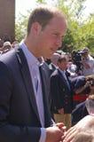 Prinz William lizenzfreie stockbilder
