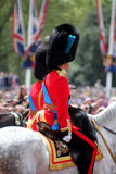 Prinz William The Duke von Cambridge Stockfotografie