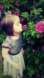 Prinzessin Aurora Stockfotos