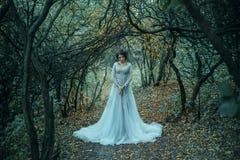 Prinzessin im grimmigen Herbstgarten stockbilder