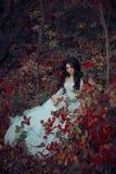 Prinzessin im grimmigen Herbstgarten stockbild