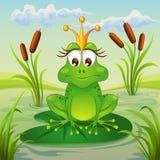 Prinzessinfrosch, der auf Blatt der Seerose sitzt Stockfotografie
