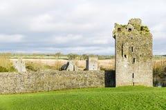 Priorato Irlanda de Kells Fotografía de archivo libre de regalías