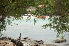 Priorità alta degli alberi del ramo sull'isola Rayong, Tailandia di Samet della spiaggia Fotografia Stock Libera da Diritti
