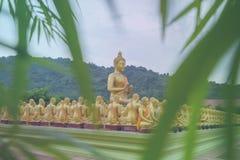 Priorità alta delle foglie della statua e del bambù di Buddha Fotografia Stock Libera da Diritti
