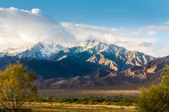 Priorità alta delle montagne e degli alberi di strati Immagine Stock Libera da Diritti