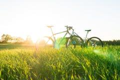 priorità alta e biciclette dell'erba Immagini Stock