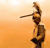 Priorità bassa arancione del cavaliere Fotografia Stock Libera da Diritti