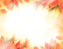 Priorità bassa arancione di autunno Fotografie Stock