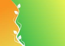 Priorità bassa arancione e verde con il motivo della pianta Fotografia Stock
