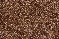 Priorità bassa arrostita dei chicchi di caffè Immagini Stock