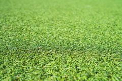 Priorità bassa artificiale dell'erba immagine stock libera da diritti