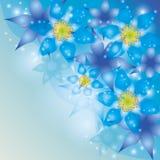 Priorità bassa astratta con i fiori esotici Fotografie Stock Libere da Diritti