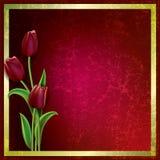 Priorità bassa astratta del grunge con i tulipani Immagini Stock