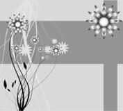 Priorità bassa astratta della natura, fiori della natura Fotografia Stock Libera da Diritti