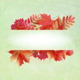 Priorità bassa astratta di autunno con i fogli variopinti Fotografia Stock