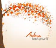 Priorità bassa astratta di autunno con i fogli variopinti illustrazione vettoriale