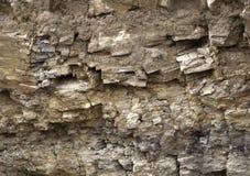 Priorità bassa astratta senza giunte Crepe e strati di arenaria Il modello degli strati geologici variegati dell'arenaria di terr immagini stock
