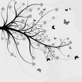 Priorità bassa astratta - una filiale graziosa di un albero Immagine Stock Libera da Diritti
