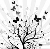 Priorità bassa astratta - una filiale graziosa di un albero Fotografie Stock