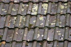 Priorità bassa bagnata delle mattonelle di tetto Fotografia Stock