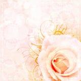 Priorità bassa beige di cerimonia nuziale dell'annata fotografia stock