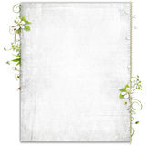 Priorità bassa bianca con i fiori della ciliegia royalty illustrazione gratis