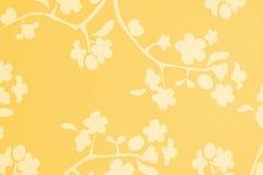 Priorità bassa bianca del fiore di colore giallo arancione Immagini Stock Libere da Diritti