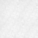 Priorità bassa bianca fragile con l'ornamento floreale Immagini Stock Libere da Diritti