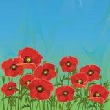 Priorità bassa blu-verde floreale con i papaveri rossi Immagine Stock