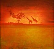 Priorità bassa con fauna africana e la flora Immagine Stock