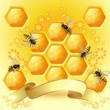 Priorità bassa con gli api Immagine Stock Libera da Diritti