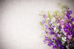Priorità bassa con i fiori Fotografia Stock